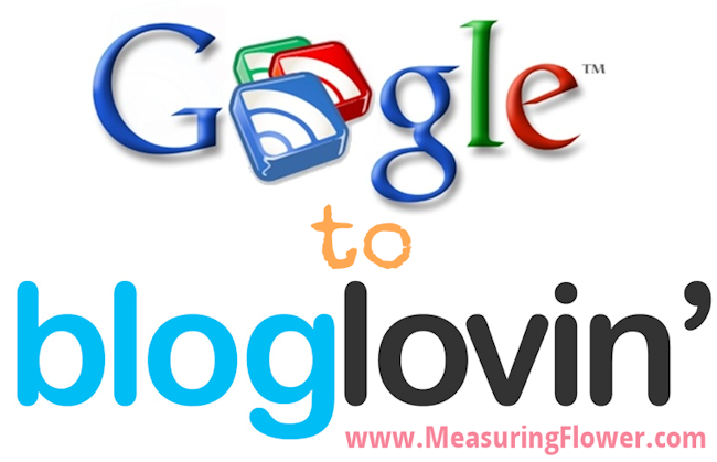 Switching from Google Reader to Bloglovin'