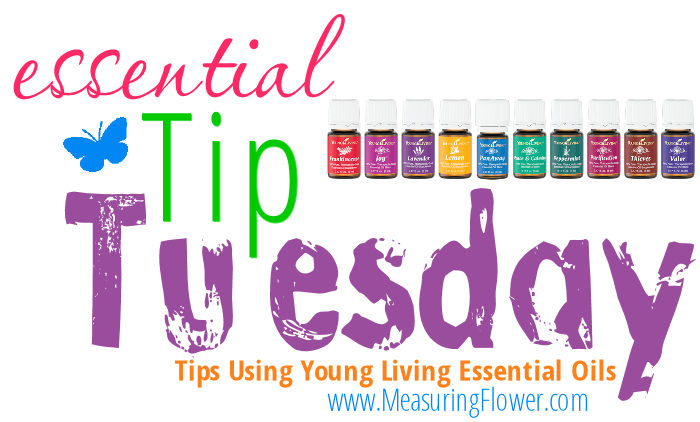 essential tip tuesday
