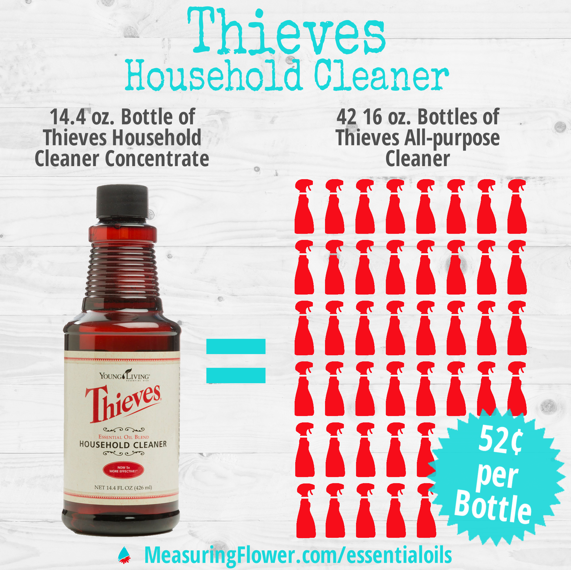 thieves-householder-cleaner-infographic